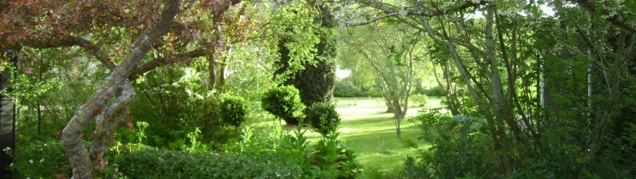 Beautiful garden surrounds